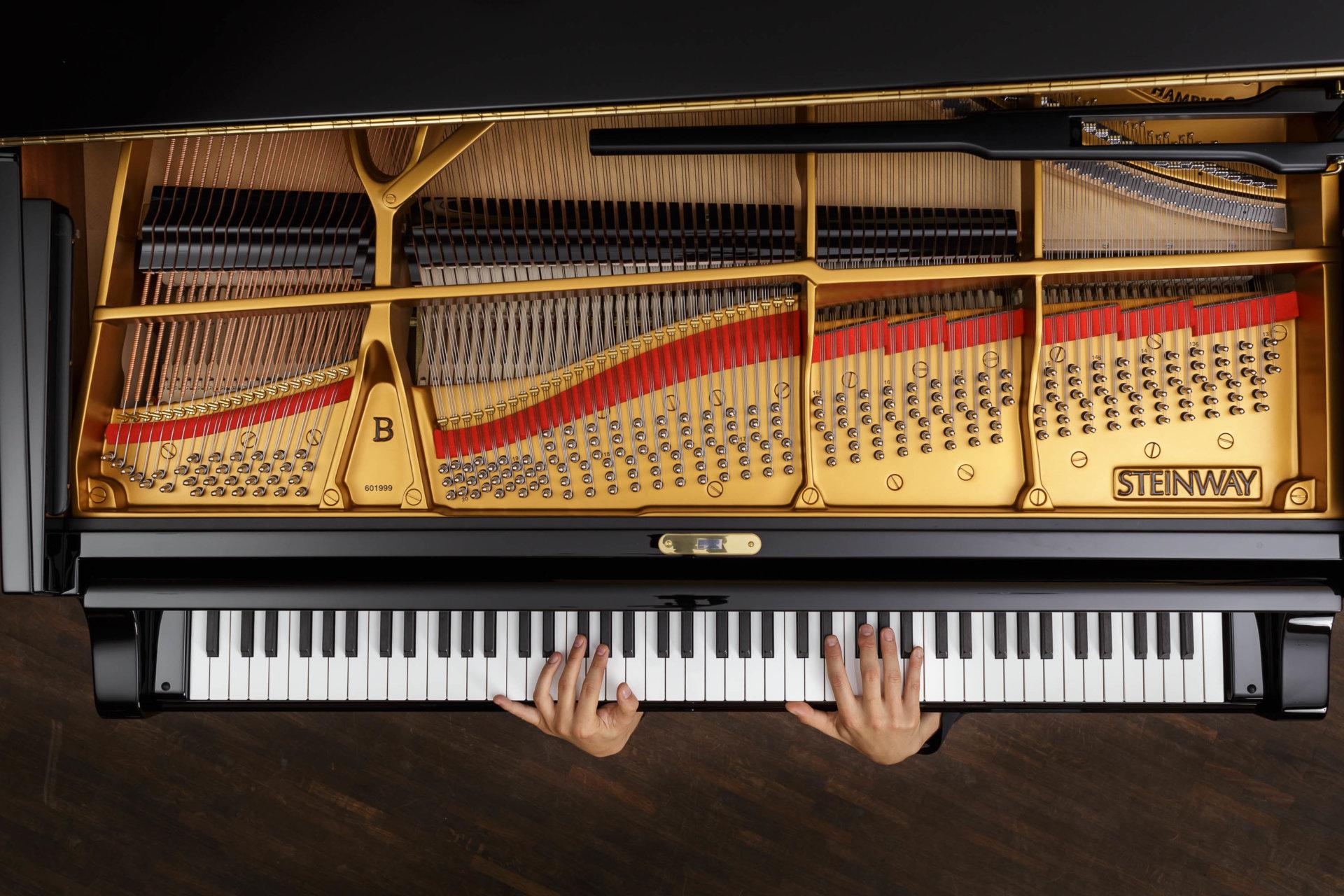 DRUCKEN!, Kultur, MASTERBILD, Pianist, Projekt, Serie, klavier, konzert, meisterfinger, musik, musiker, piano, tasten